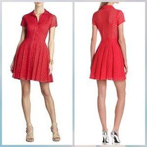 BCBG Dasha Dress (seen on tv!)